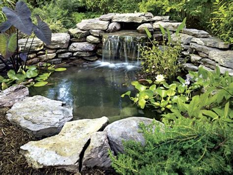 Small Garden Ponds Designs Backyard Pond Gardening Backyard Pond Ideas Small