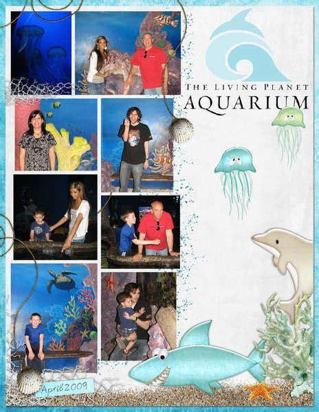 scrapbook layout aquarium 78 best scrapbook layouts travel aquarium images on