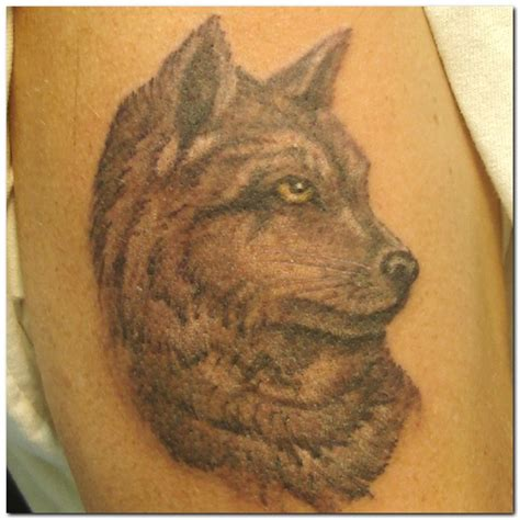Wolf Tattoo Meaning Yahoo | wolf tattoo meaning yahoo tattoo collection