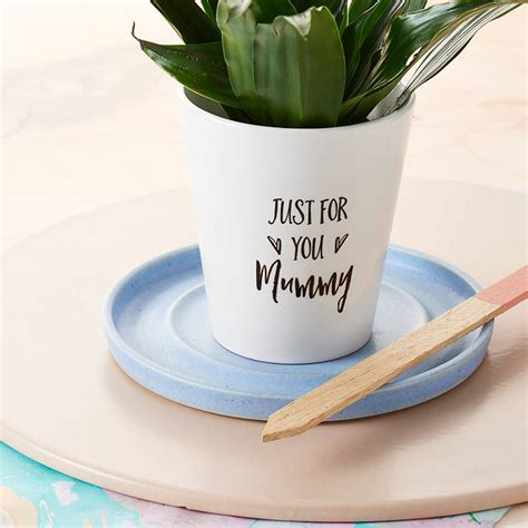 personalised    plant pot  tillyanna