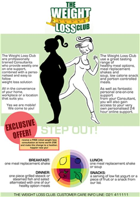 flyer design lynda 14 elegant playful nutrition flyer designs for a nutrition