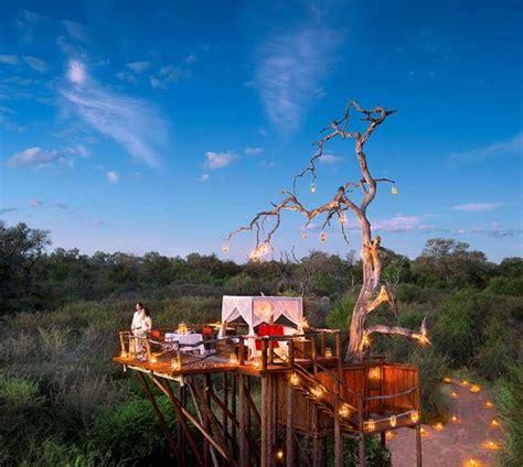 lion sands game reserve chalkley luxury treehouse sabi sands