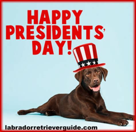 Presidents Day Meme - holiday labrador dog memes gallery of special day dog