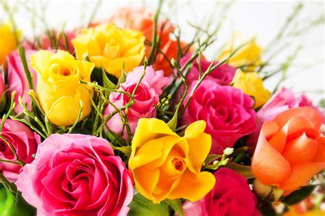 1325003905 fleurs tropicales calendrier anniversaire livre jardinage 365 bouquets 224 r 233 aliser