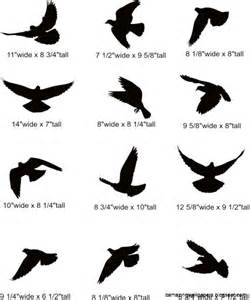 black and white bird wall design 2017 2018 best cars reviews