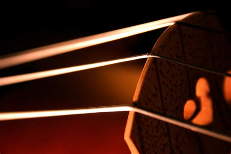 strings of what next cello strings harmonics spectograms