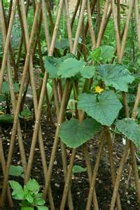Vegetable Trellis Ideas File Garden Trellis Jpg Wikimedia Commons