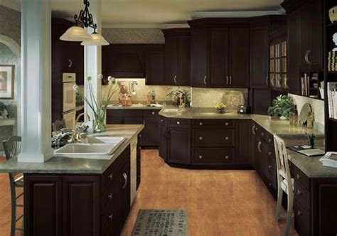 Dark Cabinet Kitchen Ideas by Dark Brown Kitchen Cabinets Kitchenidease Com