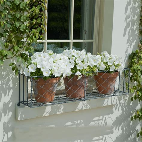 garden window boxes window box planting tips garden requisites