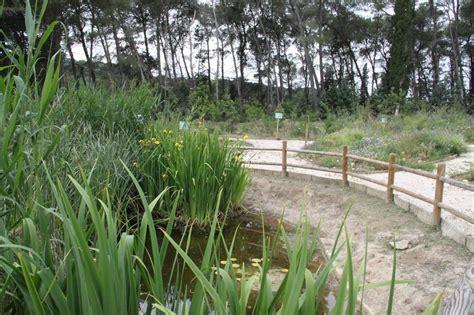 giardino botanico bari gravina vivaio comunale affidata all universit 224 di bari