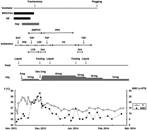 operative report sle systemic lupus erythematosus with intestinal perforation