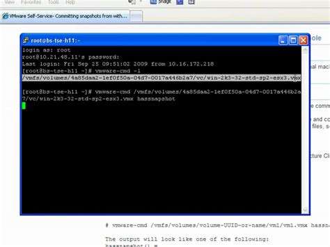 esx console how to commit snapshots from within the vmware esx service