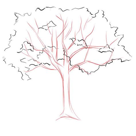 simple drawing tree how to draw a tree dr
