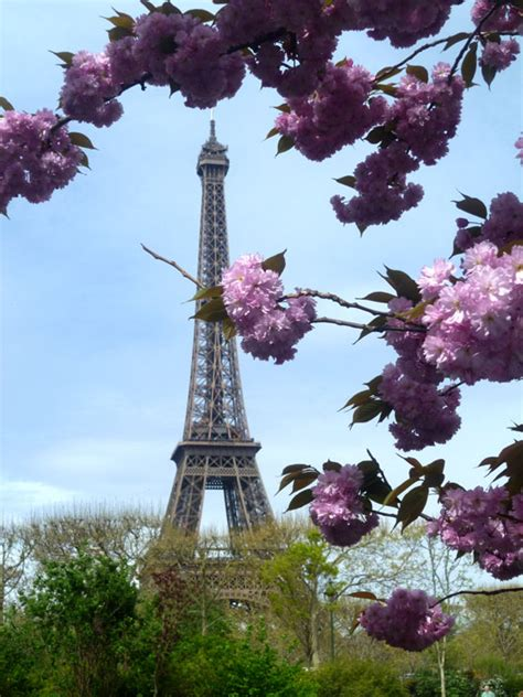 eiffel tower paris in spring find super cheap life in languedoc just another wordpress com site