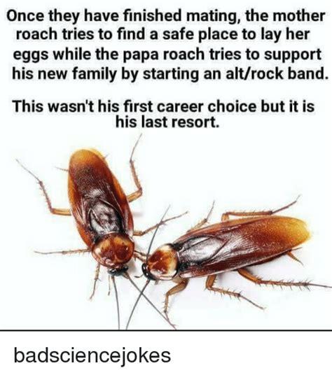 Roach Meme - 25 best memes about papa roach papa roach memes