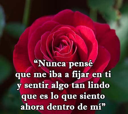 imagenes rosas versos versos con rosas de amor rosas de amor