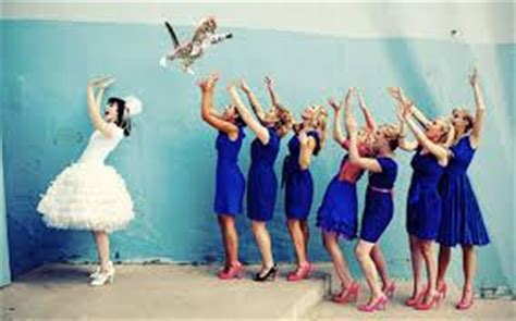 bridesthrowingcats       website called brides throwing cats enjoy