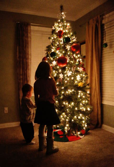 child and petprof xmas tree tree lights
