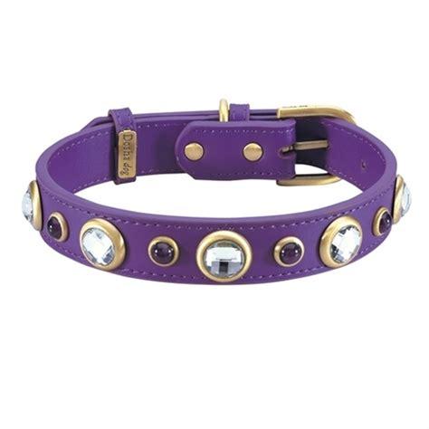 purple collars purple leather collar dosha