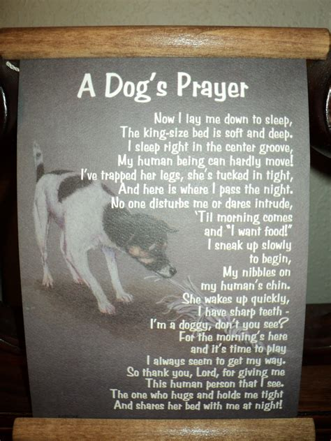 puppy prayers rescue poems and quotes quotesgram