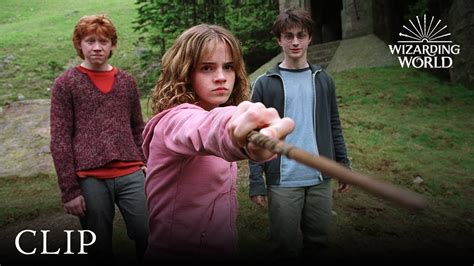Hermione Granger Et Harry Potter by Hermione Granger Vs Draco Malfoy Harry Potter And The
