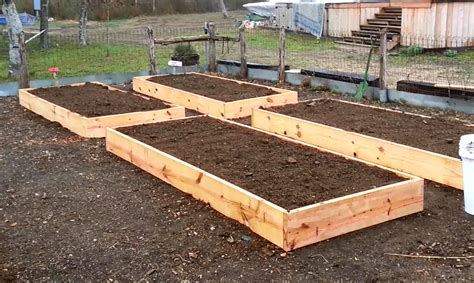 Raised Bed Designs by Daddykirbs Garden Building Filling Raised Beds