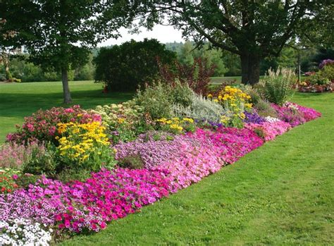 design annual flower bed perennials total lawn care inc full lawn maintenance