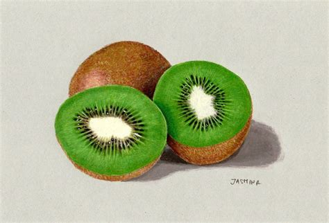 colored drawings colored pencil drawing of kiwi fruit by jasminasusak