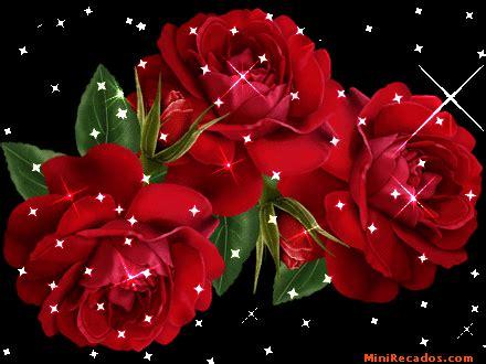 imagenes de rosas rojas en movimiento imagenes de rosas rojas con movimiento imagui