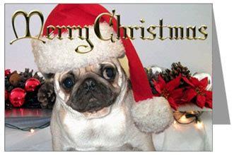 merry pug merry everyone