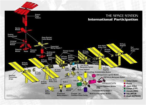 iss diagram ben s world history ii midterm the international space