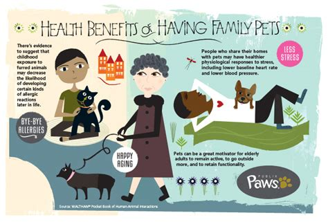 7 Benefits Of Owning A Pet by Health Benefits Of Pet Ownership Publix Markets