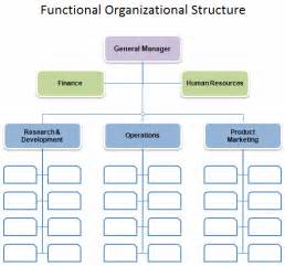Org Chart Templates For Word by Free Organizational Chart Template Company Organization