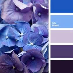 colour combination with blue best 20 purple color schemes ideas on pinterest purple