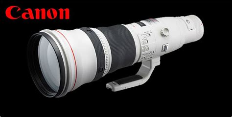 Canon Lens Ef 800mm F5 6 L Usm canon ef 800mm f 5 6 do is lens in development lens rumors