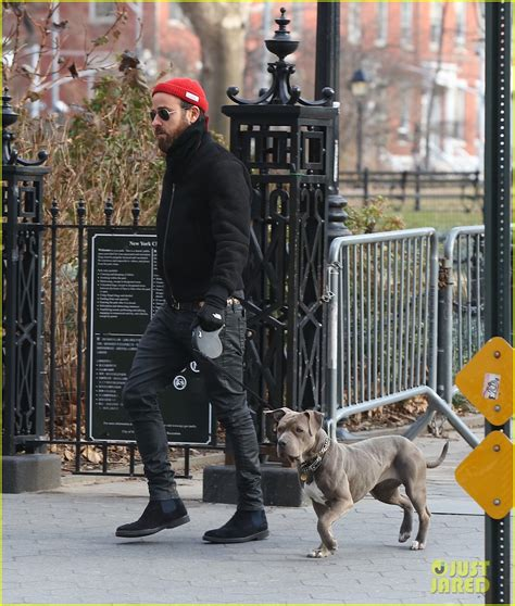 justin theroux dog justin theroux walks his cute pup in chilly new york city