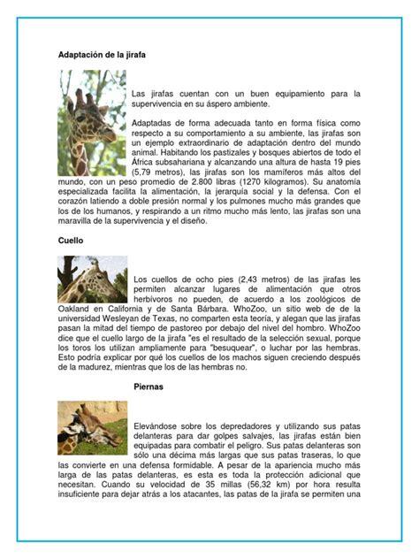 informacion de anses sobre los 800 pesos de ayuda escolar adaptaci 243 n de la jirafa