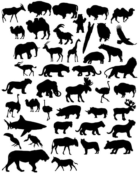 printable jungle animal silhouettes 1000 images about animal print on pinterest jungle