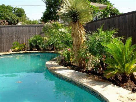 backyard pool landscaping pool landscaping ideas backyard pools dma homes 86940