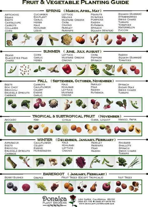 Backyard Vegetable Gardening Guide by Vegetable Planting Guide Gardens