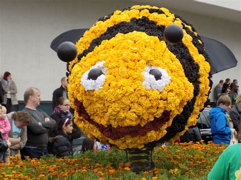 yellow and black bee flower float free image   Peakpx