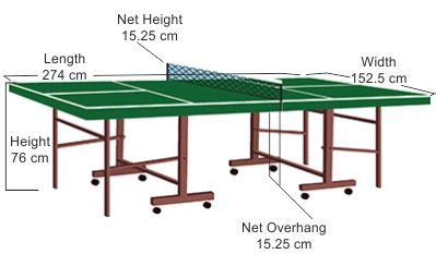 everything you need to know about ping pong table