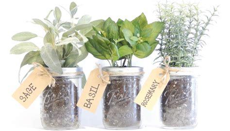 Mason Jar Herb Kit   Herb Garden   Urban Farmer