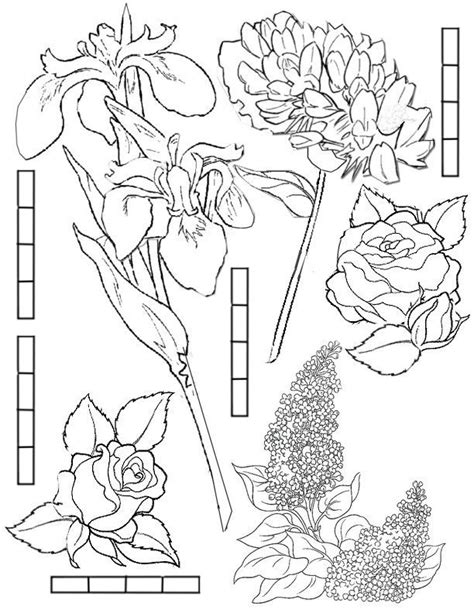 fairy door coloring page colouring pages of fairy gardens free printable fairy