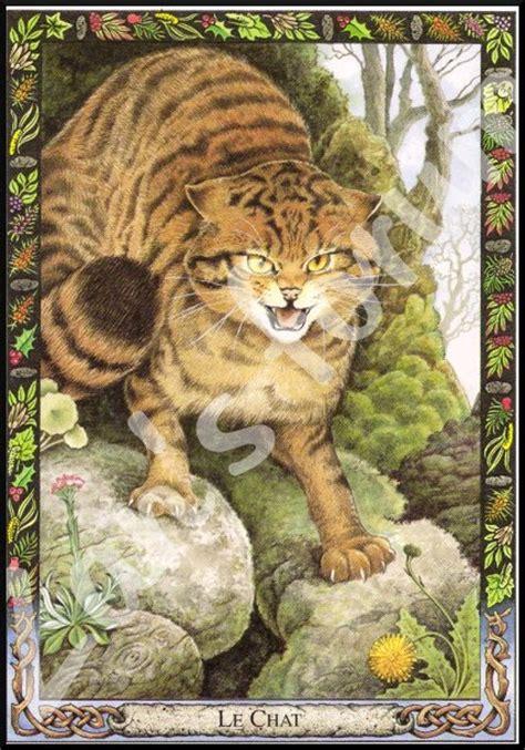 regarder oscar et le monde des chats regarder streaming vf en france druide1