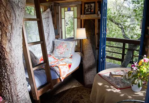 best airbnb in san francisco luxury airbnb treehouses our top 6 picks