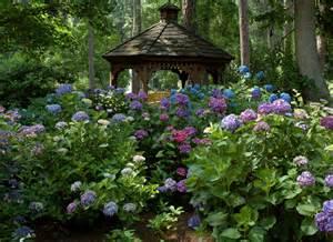 garten hortensie hydrangea garden gazebo norfolk botanical garden