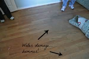 Hardwood Floor Water Damage Our Home A Flooring