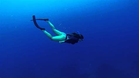 free diving in bonaire in the dutch caribbean travel tips