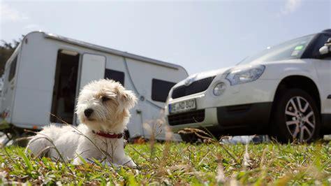 Hund Im Auto Hitze by Hund Im Wohnmobil Und Wohnwagen Sichern Cerstyle Net